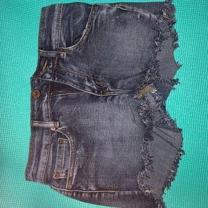 Shorts (never worn)